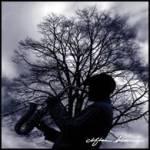 """""""Jazz Branching"""" by Clifton Henri"""