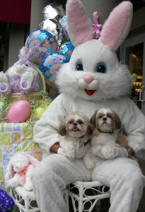 Easter Bunny with Dogs
